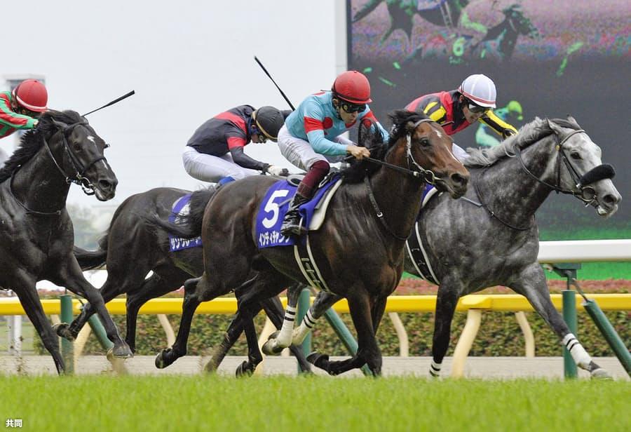 馬券予想をする時のコツその3:競走馬の能力を確認しよう